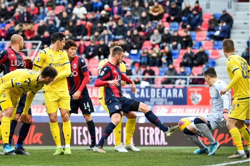Bologna-Verona 1-1